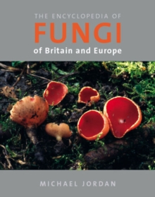 The Encyclopedia of Fungi of Britain and Europe, Paperback