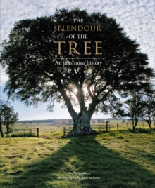 The Splendour of the Tree : An Illustrated History, Hardback