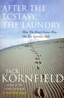 After the Ecstacy, the Laundry, Paperback