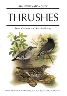 Thrushes, Hardback