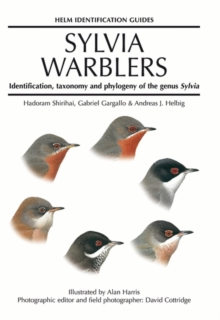 Sylvia Warblers : Identification, Taxonomy and Phylogeny of the Genus Sylvia, Hardback Book