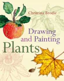 Drawing and Painting Plants, Paperback