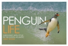 Penguin Life : Surviving with Style in the South Atlantic, Hardback