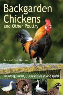 Backgarden Chickens and Other Poultry, Paperback Book
