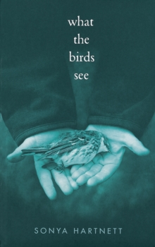 What the Birds See, Paperback