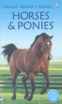 Horses and Ponies, Paperback