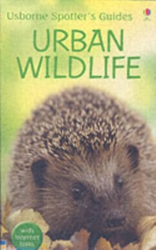 Urban Wildlife, Paperback Book