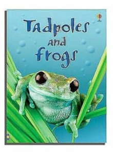 Tadpoles and Frogs, Hardback Book