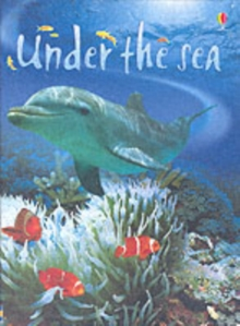Under the Sea, Hardback Book