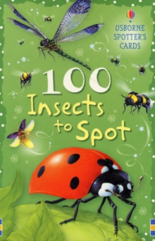 100 Insects to Spot, Cards