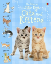 Little Book of Cats and Kittens, Hardback Book