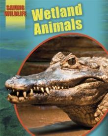 Wetland Animals, Hardback Book