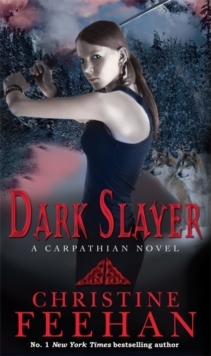 Dark Slayer, Paperback