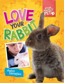 Love Your Rabbit, Paperback