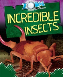 Incredible Insects, Paperback