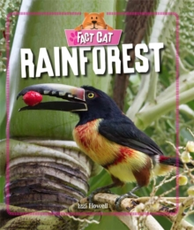 Rainforest, Paperback