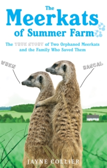 The Meerkats of Summer Farm : The True Story of Two Orphaned Meerkats and the Family Who Saved Them, Paperback