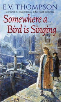 Somewhere a Bird is Singing, Paperback