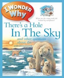 I Wonder Why There's a Hole in the Sky, Paperback Book