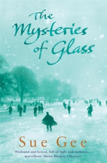 The Mysteries of Glass, Paperback