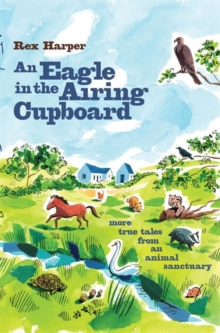 An Eagle in the Airing Cupboard, Paperback Book