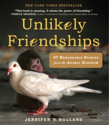 Unlikely Friendships : 50 Remarkable Stories from the Animal Kingdom, Paperback