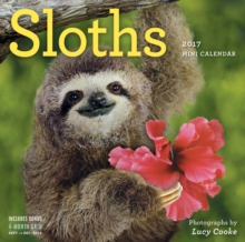 Sloths Mini Wall Calendar 2017, Calendar