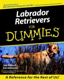 Labrador Retrievers for Dummies, Paperback