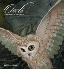 Owls 2017 Wall Calendar, Calendar Book