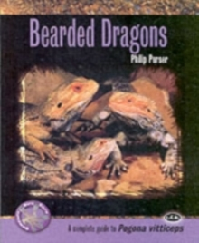 Bearded Dragons, Paperback
