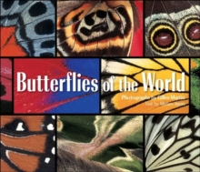 Butterflies of the World, Hardback Book