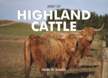 Spirit of Highland Cattle, Hardback