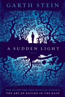 A Sudden Light, Hardback Book
