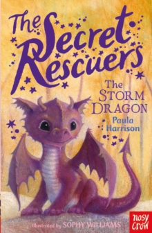 The Secret Rescuers: The Storm Dragon, Paperback Book