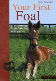 Your First Foal : Horse Breeding for Beginners, Paperback Book