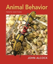 Animal Behavior : An Evolutionary Approach, Paperback