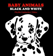 Baby Animals Black and White, Board book