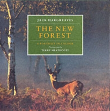 The New Forest : A Portrait in Colour, Hardback Book