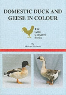 Domestic Duck and Geese in Colour, Paperback