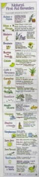 Natural First Aid Remedies Chart, Wallchart