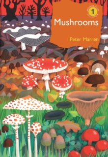Mushrooms, Hardback