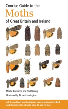 Concise Guide to the Moths of Great Britain and Ireland, Paperback