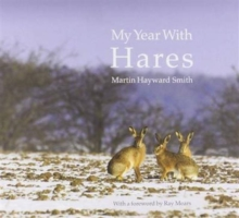 My Year with Hares, Hardback Book