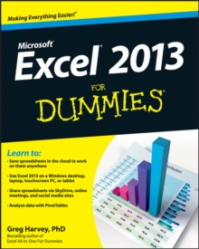 Excel 2013 For Dummies, Paperback