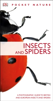 Insects and Spiders, Paperback Book