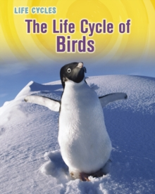 The Life Cycle of Birds, Hardback