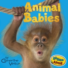 Animal Babies, Board book