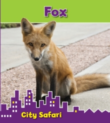 Fox : City Safari, Hardback