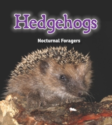 Hedgehogs : Nocturnal Foragers, Hardback Book