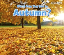What Can You See in Autumn?, Hardback